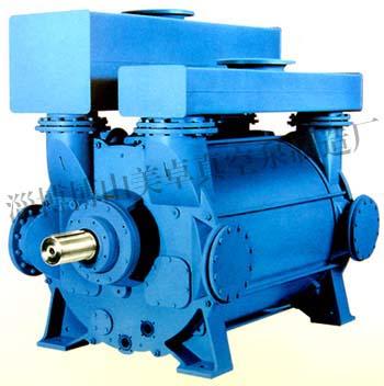 2BE3系列水环龙8国际客户端下载及压缩机